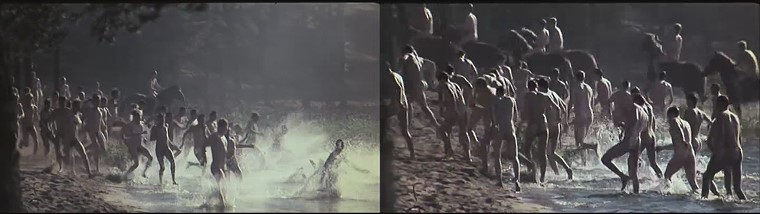 Finland soldiers nude in the water  with horses